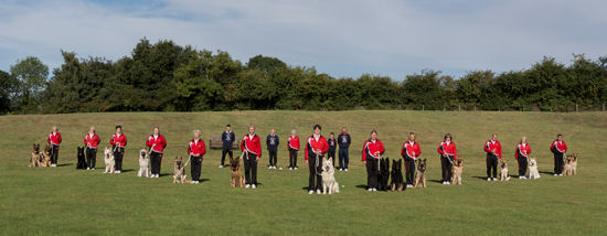 German Shepherd Dog Display Team Photo